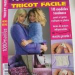 modèle tricot facile revue #3