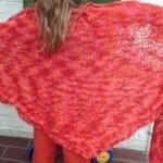 modele chale tricot debutant #4