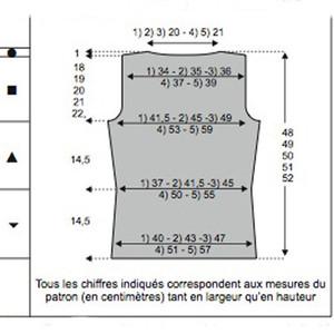 Photo Tricot Modele Pour Tricoter Gilet Coupe Couture Manche Ballon
