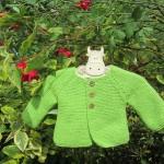 modele tricot jersey gratuit debutant #18