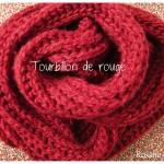 photo tricot modèle tricot écharpe bergère de france 5