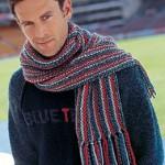 photo tricot modèle tricot écharpe bergère de france 7