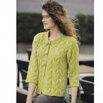 photo tricot modèle tricot femme gilet 7
