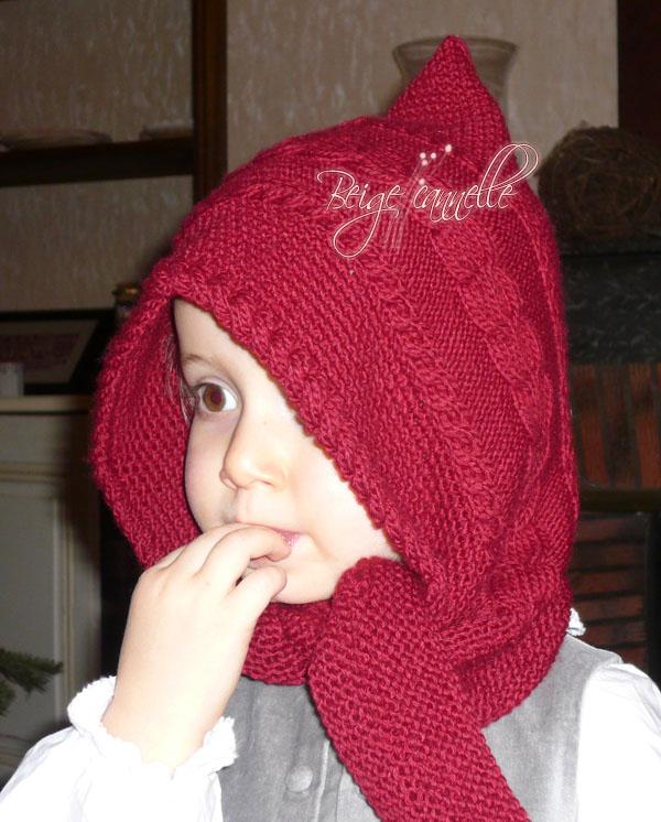 photo tricot modele tricot echarpe bonnet 13