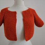 photo tricot modele tricot facile katia gratuit 4