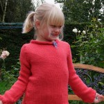 photo tricot modele tricot gilet 2 ans 12