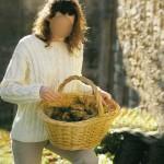 photo tricot modele tricot jersey irlandais 15