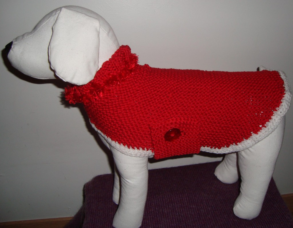 photo tricot modele tricoter pull chien
