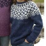 photo tricot modèle tricot gilet jacquard femme 17