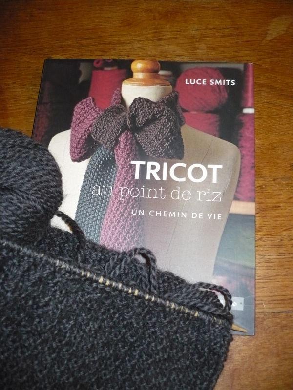 photo tricot mod le tricot point de riz luce smits 12. Black Bedroom Furniture Sets. Home Design Ideas