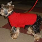 photo tricot modèle tricot tour de cou yorkshire 10
