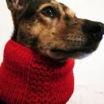 photo tricot modèle tricot tour de cou yorkshire 7
