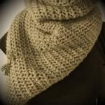 photo tricot modèle tricoter nid d abeille le point 18