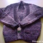 photo tricot modele bolero tricot gratuit bergere de france 15