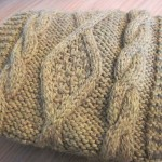 photo tricot modele point tricot torsade 5