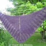 photo tricot modele tricot facile ishbel 11