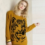 photo tricot modele tricot gilet jacquard 17