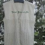 photo tricot modele tricot gilet sans manche 5