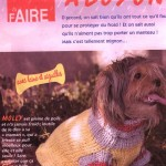photo tricot modele tricot gilet yorkshire 4