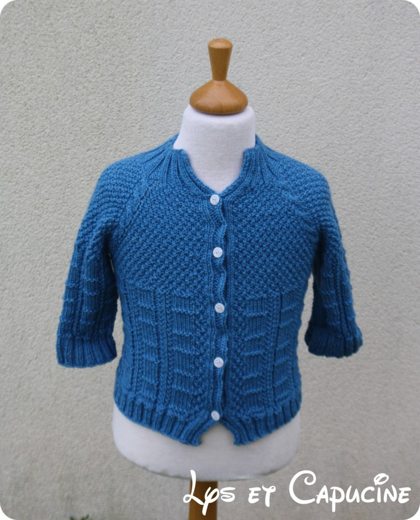photo tricot modele tricot gilet yoshi 13