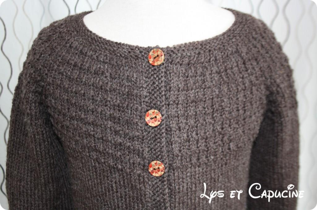 photo tricot modele tricot gilet yoshi 15