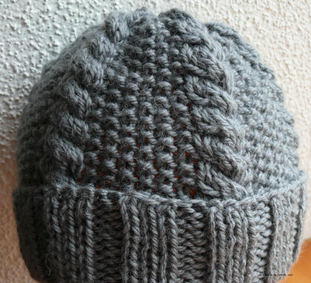 patron tricot tuque torsade