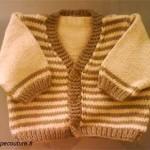 photo tricot modele tricot jersey veste 16