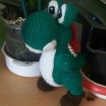 photo tricot modele tricot yoshi 9