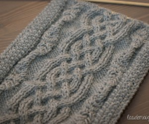photo tricot modele tricoter echarpe 18
