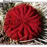 photo tricot patron tricot béret 16