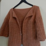 photo tricot tricot modele de gilet 18